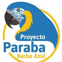 Proyecto Paraba Barba Azul - Blue-throated Macaw Project