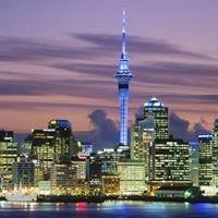 Auckland SEO Search Engine Optimisation & Web Design and Development