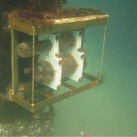 Scripps Ocean Acidification Real-time SOAR Monitoring Program