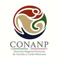 Conanp Región Península de Yucatán y Caribe Mexicano