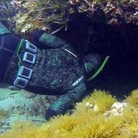 Sub Marine Chasse et Apnée