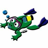 Froggie Fever - Your One Stop Dive Shop