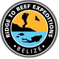 Ridge to Reef Expeditions