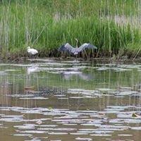 Old Woman Creek Nature Preserve