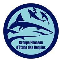 Groupe Phocéen d'Etude des Requins / Phocean Shark Research Group