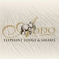 Addo Elephant Lodge and Safaris