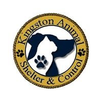 Kingston Animal Shelter/Control
