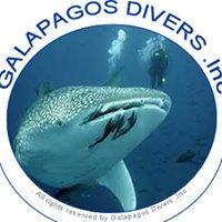 Galapagos Divers