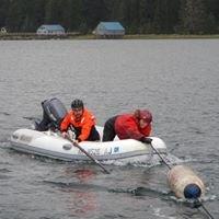 Petersburg Marine Mammal Center - PMMC