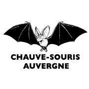 Chauve-Souris Auvergne