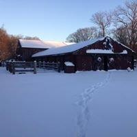 Stony Creek Farm and Grass Fed Beef