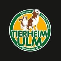 Tierheim Ulm
