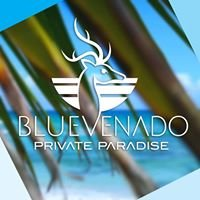 Blue Venado Weddings