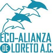 Eco Alianza Loreto A.C.