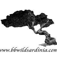 B&B Wild Sardinia