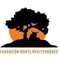 Fundación Monte Mediterráneo