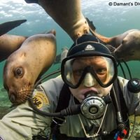 Damant's Diving Digital Photography