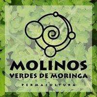 Molinos Verdes de Moringa - Permacultura