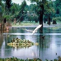 Atchafalaya National Wildlife Refuge