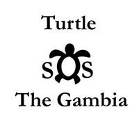 Turtle SOS The Gambia