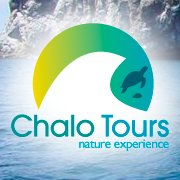 Chalo Tours