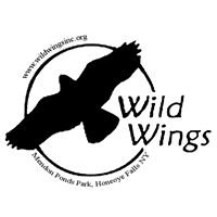 Wild Wings Inc.