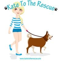 The Adventures of Kate To The Rescue