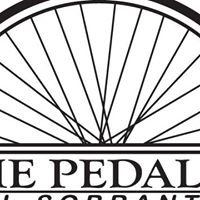 The Pedaler Bike Shop