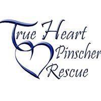 True Heart Pinscher Rescue