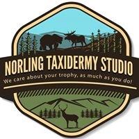 Norling Taxidermy Studio