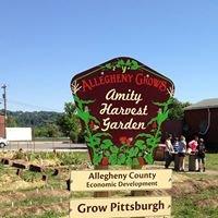 Amity Harvest Community Garden