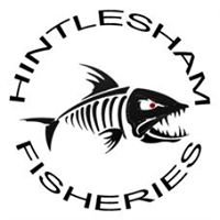Hintlesham Fisheries