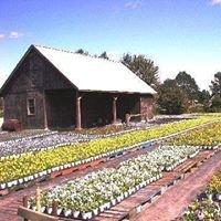 Teeuwen Greenhouses