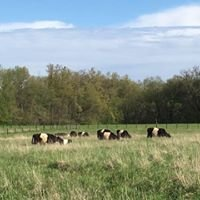 Bear Creek Farm & Ranch