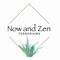 Now and Zen Terrariums