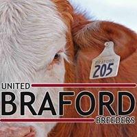 United Braford Breeders