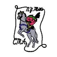 New York Metropolitan Country Music Association