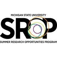 Summer Research Opportunities Program at Michigan State University