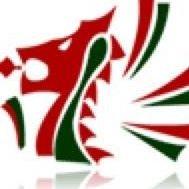 Welsh Karate Governing Body Ltd
