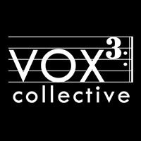VOX 3 Collective, Inc. NFP