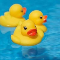 Duckathon Tralee
