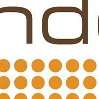 Sundog Energy Ltd