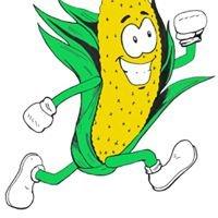 Got Corn ? #1