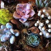 Petalos Floral Design