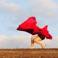 Wild Space Dance Company