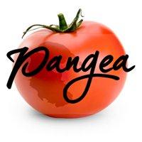 Pangea Food Truck & Catering