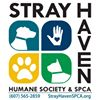 Stray Haven
