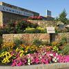 Cummings Center