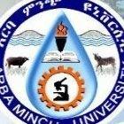 Arba Minch University