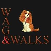 Wag and Walks Huddersfield